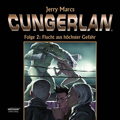 Flucht aus höchster Gefahr audiobook cover art