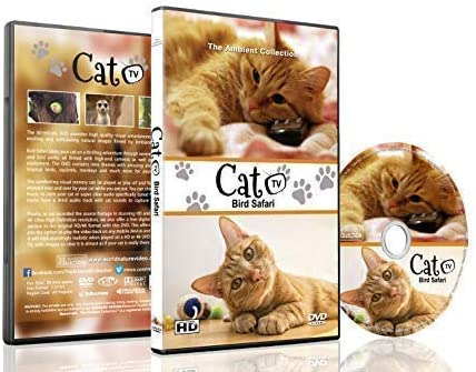 Family Cat DVD Cat TV Entertain your Cats with Stimulating Images of Cute Little Animals and product image