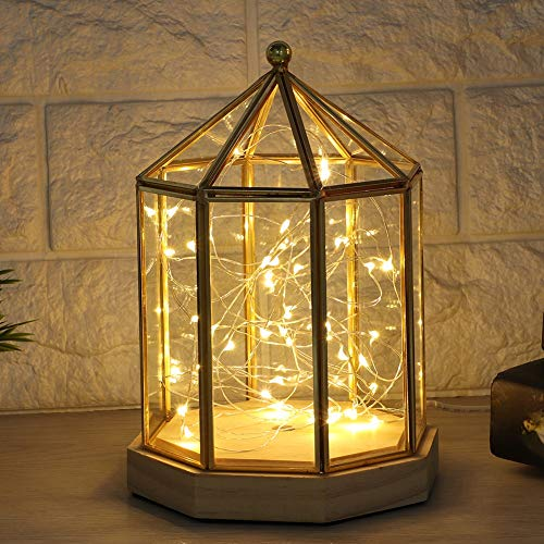 Boquite Geometrischer Glaslampenschirm, geometrische Form Elegante Pflanzen Glasabdeckung Sukkulente Pflanzenhalter Hausgarten Dekoration (Licht Nicht enthalten)