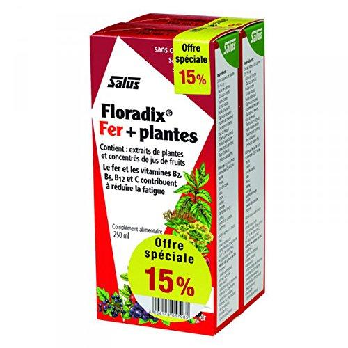 Floradix 500ml:–Juego de 2botellas de 250ml–oferta especial -15%