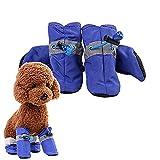 ZUOLUO Zapatos para Perros Calcetines Perro Perro Botas de Lluvia Perro Calcetines Calcetines Antideslizantes para Perros Zapatos para Perros Grandes Blue,#1