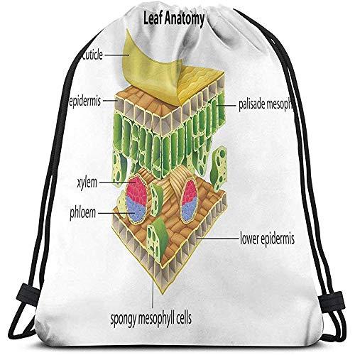 jenny-shop Printed Drawstring Rucksäcke Taschen, Anatomie eines Blattes Namen der mikroskopischen Teile Spongy Stoma Epidermis Schichten