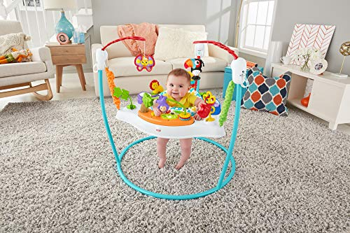 Fisher-Price Jumperoo: Animal Activity, Blue