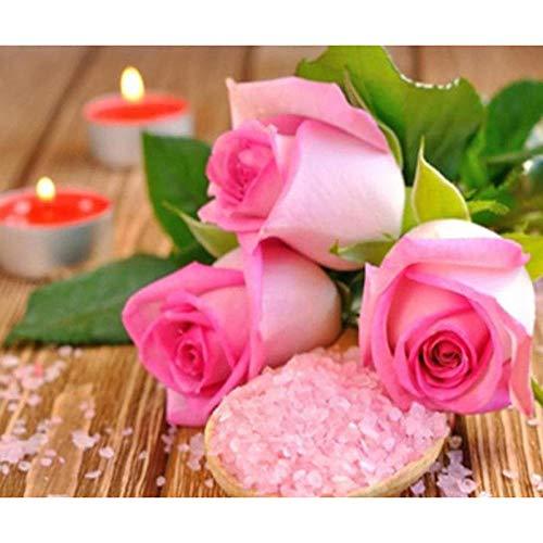 DIY 5D diamantschilderij, vierkant, kunst, bloemen, roze, rijst, 25 x 20 cm, strass, borduurwerk, kruissteek, mozaïek, kunst, decoratie, kinderen, cadeau
