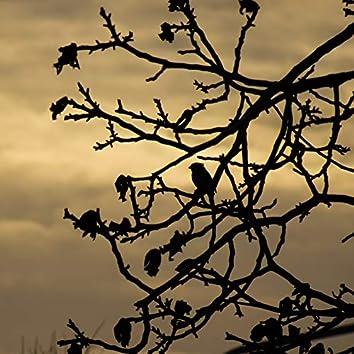 Last Day of Autumn
