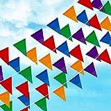 Joykey Multi-Farbe wimpel 100M Nylon Bunting Banner geflochten String Wimpelkette für Hochzeit Geburtstag Party Outdoor Garten Dekoration, 200 Dreieck Fahnen