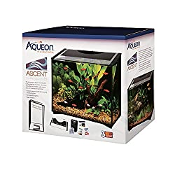 Best Fish Tanks For You In 2019 - Top 10 reviewed 14