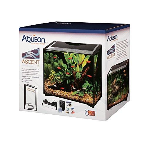 Aqueon Ascent LED Frameless Aquarium Kit 20 Gallon
