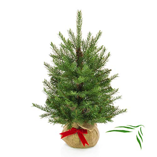 artplants.de Künstlicher Tannenbaum Wellington im braunen Jutesack, 185 Zweige, 60cm, Ø 50cm - Kunst Weihnachtsbaum - Deko Christbaum