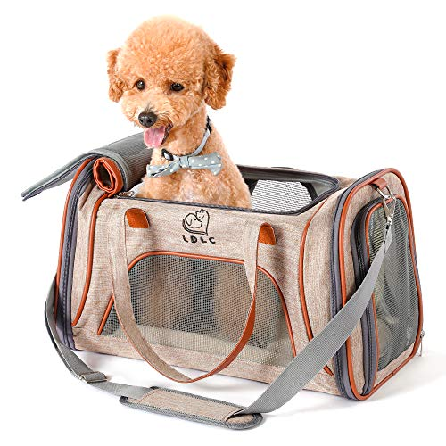 PETTOM Trasportino Cane Gatto Pieghevole Pet Carrier Impermeabile Respirabile con Striscia Riflettente Borsa Tracolla Viaggio per Animale Taglia Piccola in Aereo Auto Treno Cammello