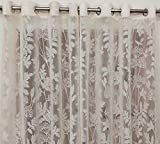 Material: Polyester    Color: White Sheer Floral Net Curtain , Semi-Transparent Curtains Package Contents: 2 Pecs Net Curtains For Window And Door Use Size: 4 x 7 Feet Door Size curtains Care Instructions: Normal machine washable in Normal water Made...