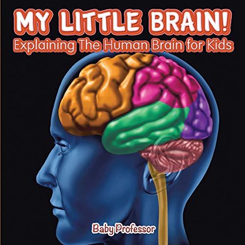 My Little Brain! - Explaining The Human Brain for Kids