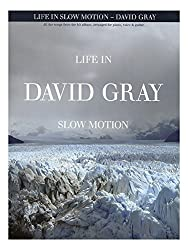 David Gray: Life In Slow Motion. Partitions pour Piano, Chant et Guitare(Boîtes d\'Accord)