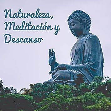 Naturaleza, Meditación y Descanso - Agua Ambiental Suena como Corriente, Lluvia y Olas del Mar, Meditación para Tu Alma, Relaja Tu Cerebro, Despertar Yoga