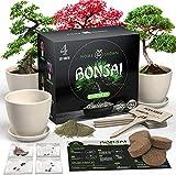 HOME GROWN Bonsai Tree Kit. Bonsai Tree Starter Kit with 4 Seeds Types, incl....