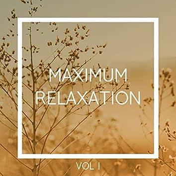 Maximum Relaxation Vol I