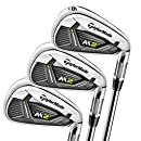 Amazon.com: Ping Eye 2 juego de palos de golf hierro 3-PW ...