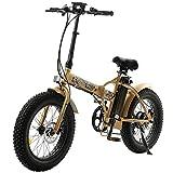 ECOTRIC Electric Bike Foldable Fat Tire EBike 48V 13AH Li-ion Battery 500W Motor 20' 4.0 inch Fat Tire Bike Aluminum Frame Electric Mountain Beach Snow EBike Bicycle (Gold)