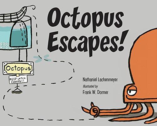 Octopus Escapes! (English Edition)
