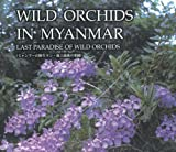 Wild Orchids in Myanmar: Last Paradise of Wild Orchids: Highlight Edition - Yoshitaka Tanaka