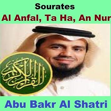 Sourates Al Anfal, Ta Ha, An Nur (Quran - Coran - Islam)