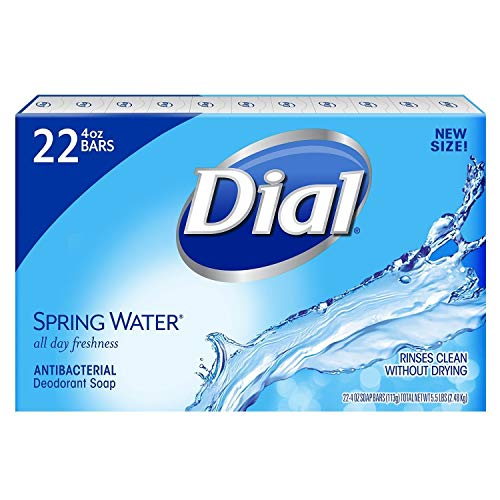 Dial Antibacterial Hand Soap 22CT In Stock Online