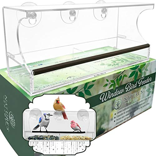 Nature's Envoy Window Bird Feeder - Strong Suction...