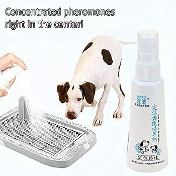XLGX Spray d'Aide à la Formation de Chien pour tampons pour Chiots, Aidez Votre Chien à Faire Pipi à Un Endroit spécifique, en intérieur ou en extérieur (60ML) (Blanc)