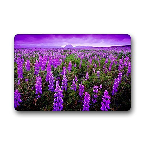 iksrgfvb Hi,Doormat Design Unique Com table Style Door Mats Decor Gorgeous Lavender Manor Doormat Size Doormat Floor Mat Indoor/Out24x16inch