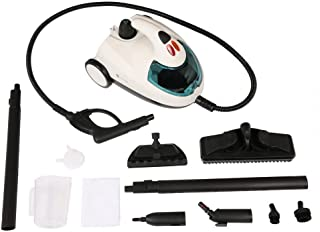 Homegear X300 Pro Multi-Purpose Steam Cleaner/Steamer for Safe Disinfecting and Cleaning of Windows