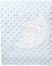Carterliebe Newborn Baby Blanket Ultra Supple,Swaddle Plush Blankets Double-Layered Dotted Backing with Satin Cuddly Printed Blanket - Speacial Warm Gift for Moms and Babies