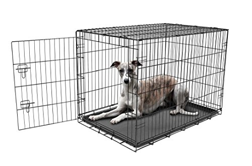 Carlson Pet Products Secure and Foldable Single Door Metal Dog Crate, Large