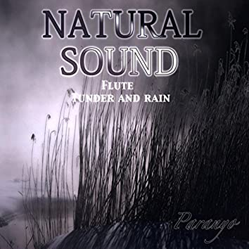 Natural sound Flute Tunder and rain