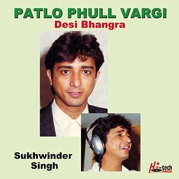 Patlo Phull Vargi