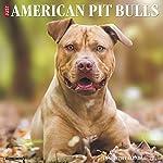 Just American Pit Bull Terriers 2020 Wall Calendar (Dog Breed Calendar) 3