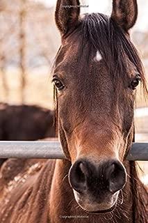 Best ranch horse journal Reviews
