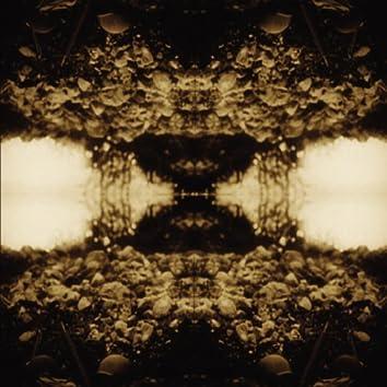 Black Triage (Bonus Track Version)