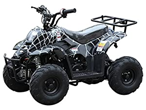 110cc ATV Four Wheelers Fully Automatic 4 Stroke Engine
