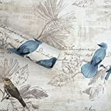 HOYOYO Self-Adhesive Shelf Liners Paper, Removable Self Adhesive Shelf Liner Dresser Drawer Wall Stickers Home Decoration, Blue Birds 17.8 x 118 Inches