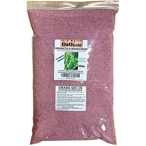 SeedRanch Pensacola Bahia Grass Seed - 10 Lbs. by SeedRanch
