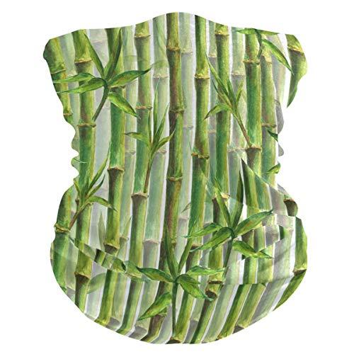 Funnyy - Pasamontañas para el cuello, diseño de hoja de bambú y hojas de bambú, para el cuello, pasamontañas, sin costuras, mágico, pañuelo para la cabeza, multifuncional, diadema para deportes al aire libre