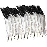School Smart 085837 Zweifarbige Adler-Feder, 25,4 cm bis 30,5 cm, weiß mit schwarzer Spitze (12 Stück)