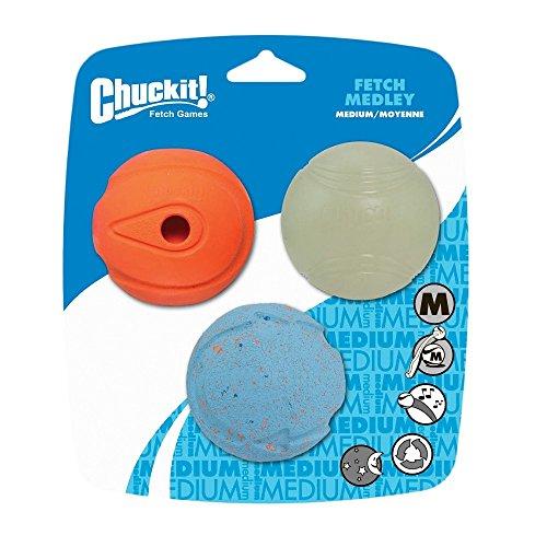 netproshop ChuckIt Hunde Ball (3er Set) normaler Ball Whistler-Ball Leuchtball Gr. M