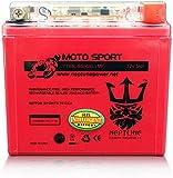 Neptune Power GEL Ytx5l-bs Gtx5l-bs ATV Battery for Polaris Predator Outlaw Sportsman Trx 50 80 90 Kfx Ksf KTM EXC Xc Sx