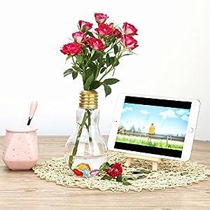 ToDIDAF – Jarrón de Flores Creativo con Forma de Bombilla Transparente, Soporte de plástico para Plantas, florero, contenedor hidropónico, Botella para decoración del hogar de Boda, 20 x 10 cm