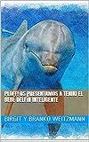 Ploff! Os presentamos a TENIKI el bebé delfín inteligente