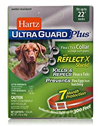 top 10 dog tick collar Hartz UltraGuard Plus Reflective Orange Flea and Tick Collar for Dogs and Puppies
