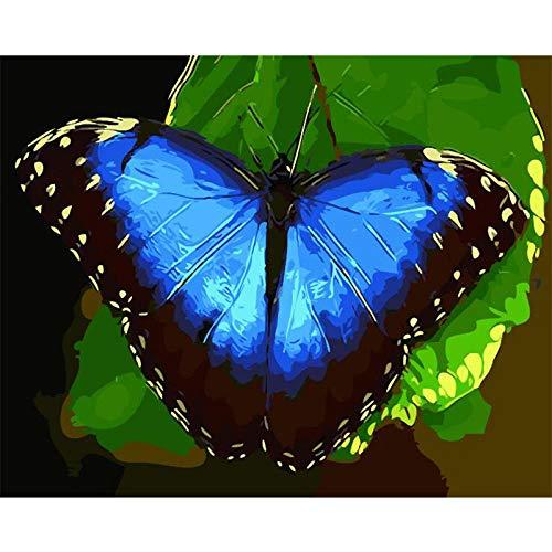 CGZLNL Pintar por Numeros para Adultos Mariposa Kit de Pintura al óleo de Lienzo DIY, Pintura por Números con Pinceles y Pigmento Acrílico 40x50 cm Sin Marco