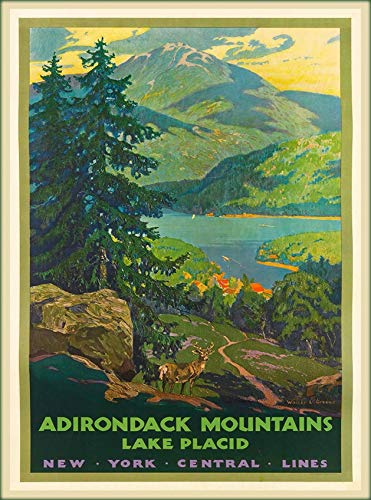 TYmall Vintage Metal Sign Wall Plaque Adirondack Mountains Lake Placid New York U.S. Travel Advertisement Poster Home Bar Man Cave Garage Kitchen Decor Sign 12X16 Inch