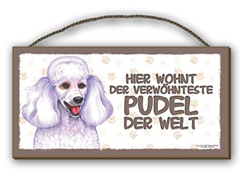 Escudo de madera perros escudo 25 cm x 12,5 cm perro escudo decorativas King Charles Spaniel